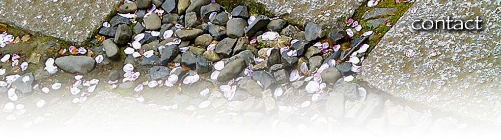 jill mellick - contact - stepping stones and pebbles