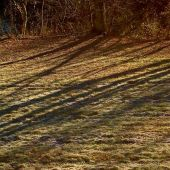 Sandgate, Vermont: Fall shadows - Landscape Photography