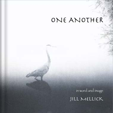 Cover Image for One Another